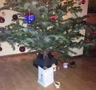 2014. gada Ziemassvētki